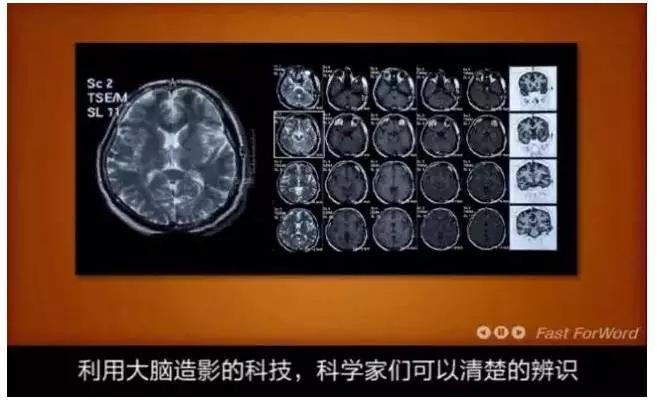 大脑地图常熟港澳城中心